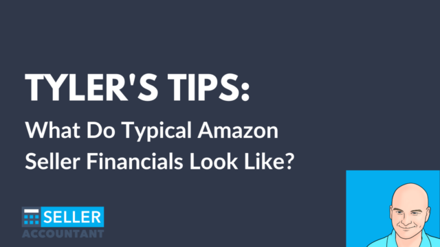 What should an Amazon seller P&L look like?